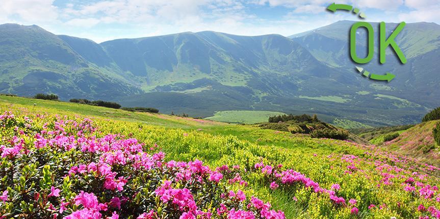 dati sul turismo in valle d'aosta a maggio