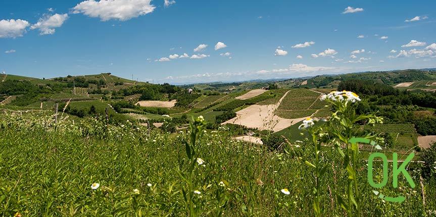 Dati sul turismo in Piemonte estate 2017