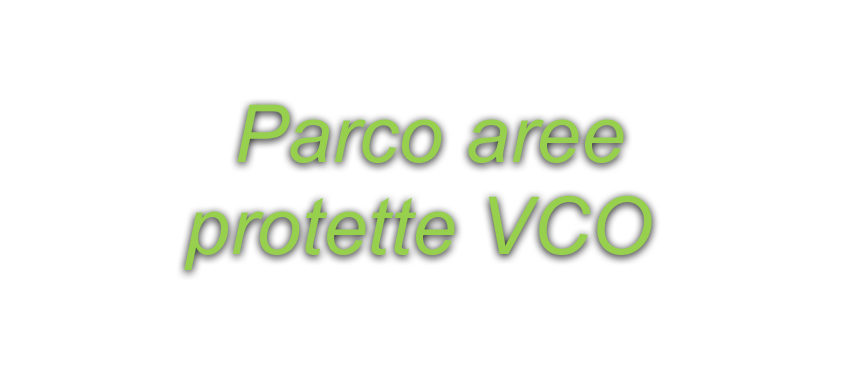 parco vco